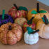 Pumpkins in Region 4